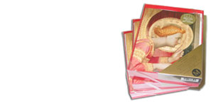 Annunciation by Fra Angelico (3 packages)
